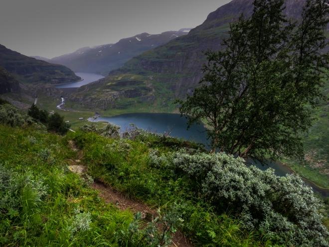 AurlandsdalenII-9